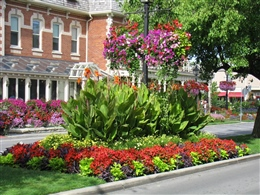Niagara-on-the-Lake: Old Town