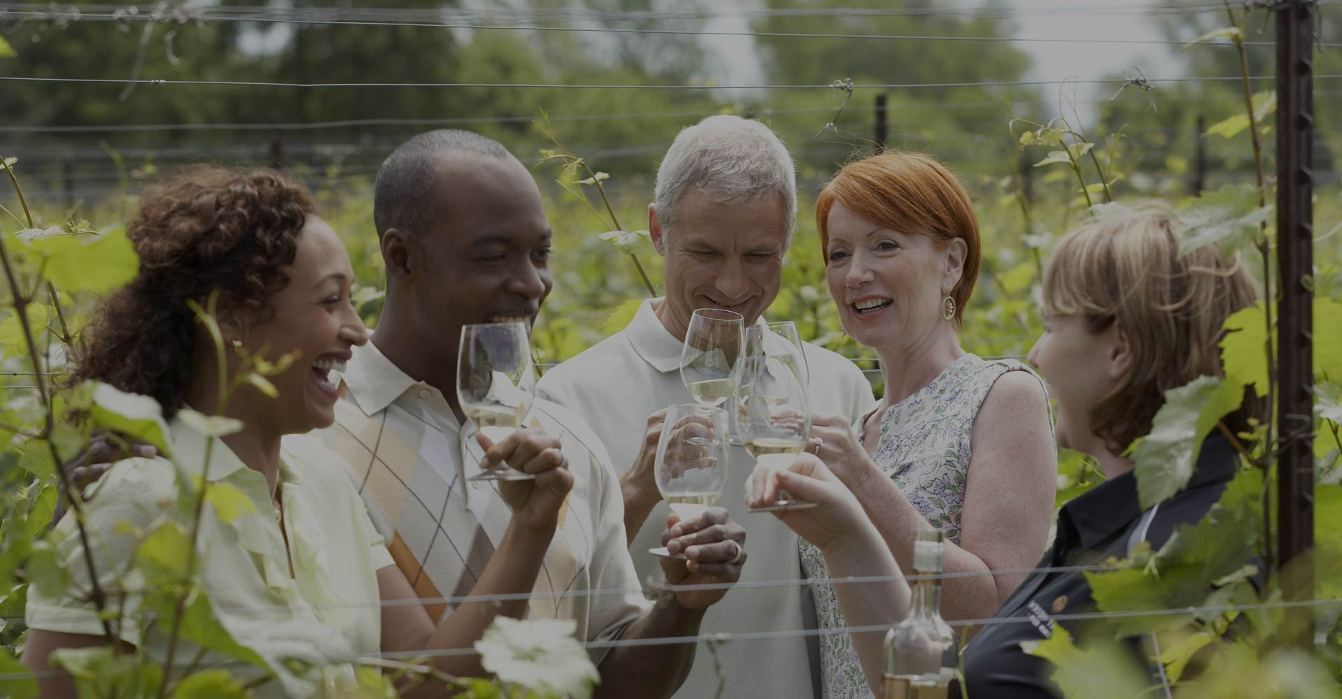 Worry Free Wine Tours